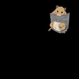 Hamster in Brusttasche