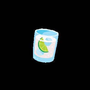 Gin Glas | Gin & Tonic Rezepte Geschenkidee