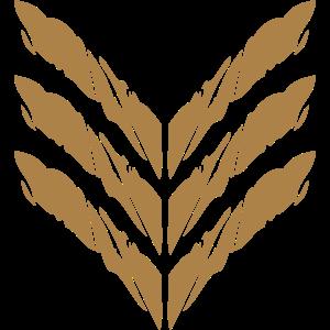 Rang Abzeichen General Soldat