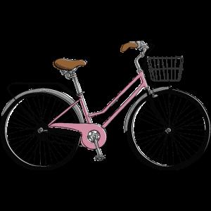 Fahrrad Rennrad Mountainbike Damen Geschenk Idee