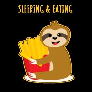 Faultier Pommes Essen Schlafen Süß