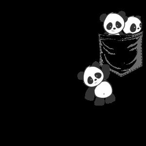 Süße Kawaii Baby Pandas spielen in der Tasche