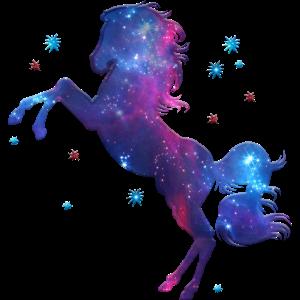 Pferd Sterne Weltraum Reiten Kosmos Universum