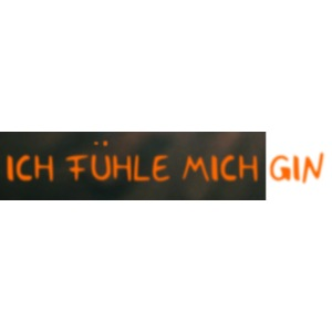 9 Fuehle mich Gin