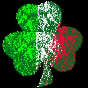 IM IRISH Irland Geschenkidee