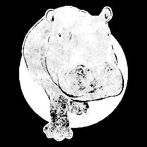 Nilpferd Hippo Afrika lustiges Tier Übergewicht