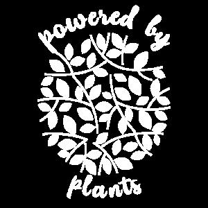 Vegan Spruch Fleischfrei Plants Geschenk
