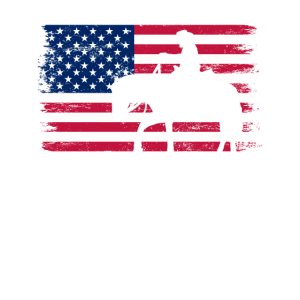 Pferd Amerika Geschenk Flagge Cowboy