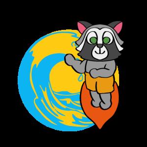 Waschbär Surfen Strandurlaub