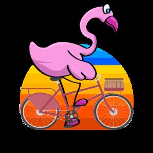 Flamingo Fährt Fahrrad