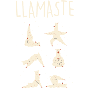 Llamaste Lustige Yogis Yoga Shirt Outfit