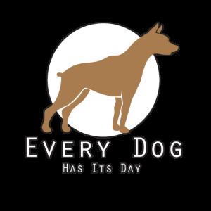 Jeder Hund hat so seinen Tag