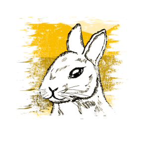 Hase Kaninchen Distressed