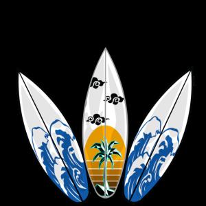 Surf mit 3 Surfbrettern