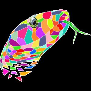 Schlange farbig