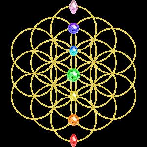 Blume des Lebens 7 Chakren Heilige Geometrie Yoga