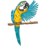 pfiffiger Papagei