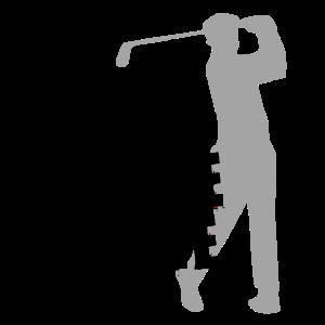 Talk Birdie Golf Golfing