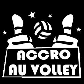 Accro au Volley