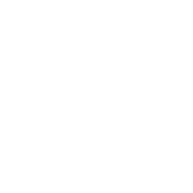 Born 4 Volley