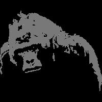 gorilla - safari - africa