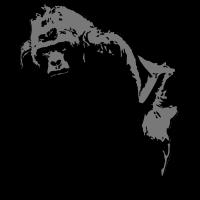 gorilla -safari - afrika