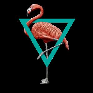 Der famose Flamingo im türkisen Dreieck