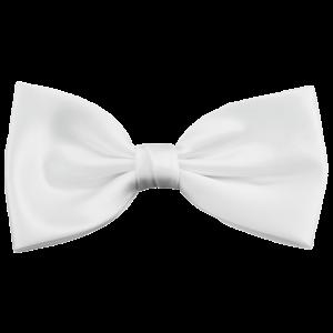 Fliege weiß klassisch plaid bow ties Ascot