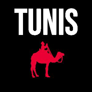 Tunis Tunesien Kamel