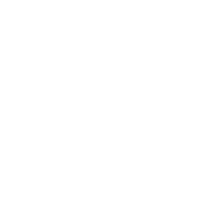 SOLO ACTION