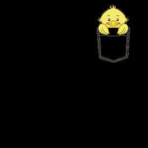 Kücken in der Tasche