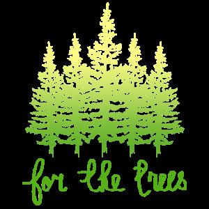 Naturschutz Wald