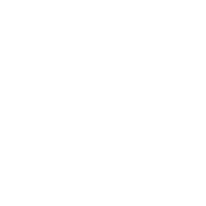 I CAMP I DRINK I GRILL