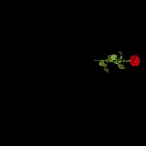 AK 47 Rose
