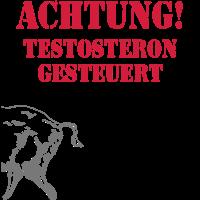 wildschwein - testosteron - keiler - liebe