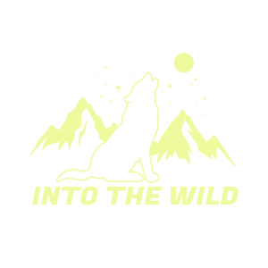 Into the wild , Geschenk, Geschenkidee