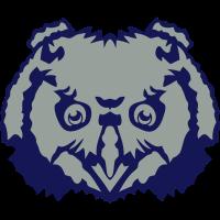 Owl Kopf wilde Tiere 7012