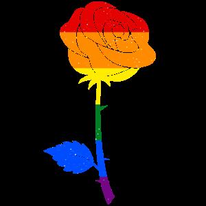LGBT Rose