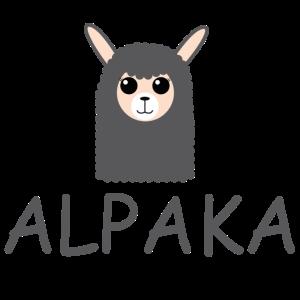 Alpakakopf Alpaka Alpaca