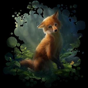 Kleiner Fuchs (Fox)