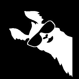 Lustiges Lama Alpaka mit Sonnenbrille