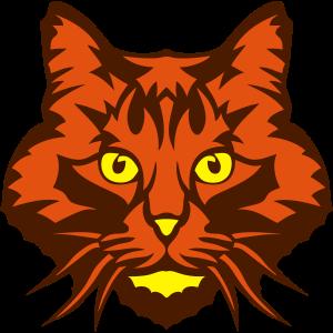 Tierkatzenkopf 16 4