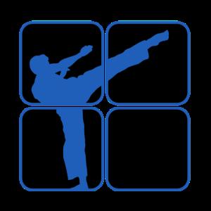 karate kaempfer krieger kampfsport