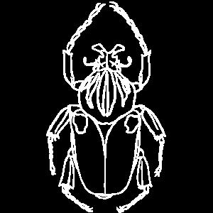 Skarabaeus