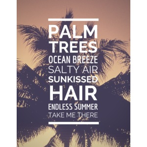 Palm shirts