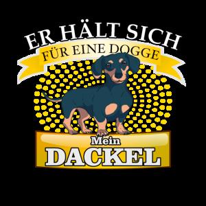 Dackel Hund Spruch Dackelblick