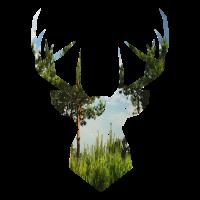 Hirsch Natur Landschaft Geschenk