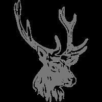hirsch  - jagd - jäger - hunting