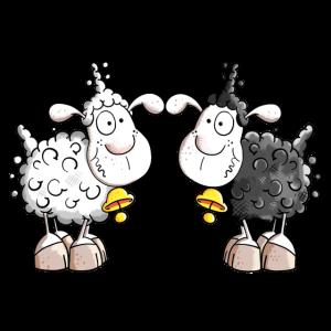 Schaf Duo
