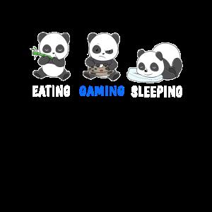Panda Essen Gaming Schlaf Videospiel Gamer Konsole